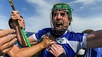 Brennan's Laois had a taste of glory and wanted more