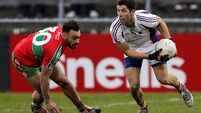 Boost for Dublin's footballers as Rory O'Carroll returns to panel from New Zealand