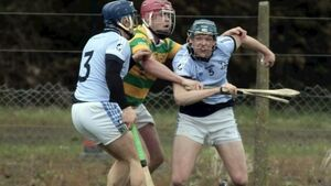 Limerick SHC: Na Piarsaigh open title defence with convincing win