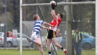 Fermoy make fantastic start to life in senior ranks