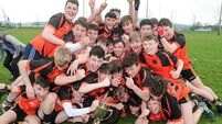 Joy for Boherbue as they claim Cork PPS Senior B Football Championship title