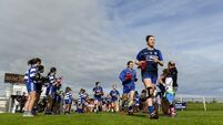 Blue shoots welcome in Waterford football renaissance