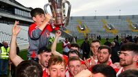 All in all, not a bad spring tidy for Cork GAA