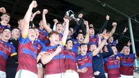 UL come out on top in rearranged All-Ireland Freshers final