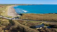 Funky Nest instincts on West Cork's Long Strand