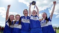 Laois beat Limerick in All-Ireland minor B camogie replay