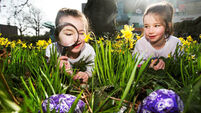 The best events and activities to keep the kids entertained over the Easter holidays