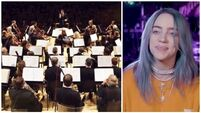 Have you ever wondered what would happen if you mix Billie Eilish with a group of Irish classical musicians?