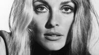 Back on the big screen: Remembering Sharon Tate 50 years after her murder