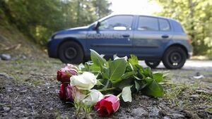 Alps victims 'shot twice in the head'
