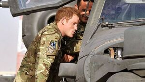 Prince Harry 'may have been attack target'