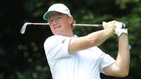 Els stunned by 'animal' Colsaerts
