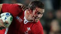 No serious damage for Welsh winger North