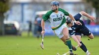 Callanan replaces Horgan for second Test