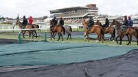 Tent tops Supreme field