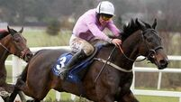 Carberry joy as Solwhit becomes ninth Irish winner