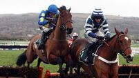 Oscar nominated for Aintree hurdle; Punchestown a possibility
