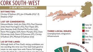 Six candidates eliminated in Cork South West