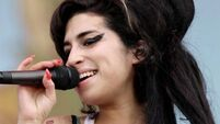 Thieves steal €161,000 worth of Winehouse's dresses