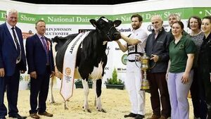 Limerick hurlers win the National Dairy Show supreme championship