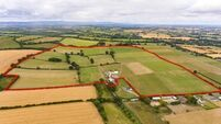 106-acre residential farm guided at €10,000-€12,000/acre