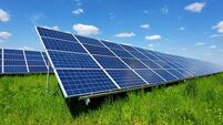 Solar pilot scheme results point to 20% lower dairy farm electricity bills