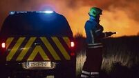 Irish Wildlife Trust wants changes after a week of wildfires devastated upland habitats