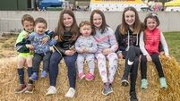 Thousands at Kildare open day