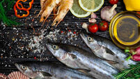 Seafood sector needs to have an innovation drive