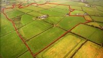 130-acre farm for sale in North Cork is 'as level as a billiard table'