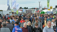 National Ploughing Championships: Ten things you need to enjoy the festival