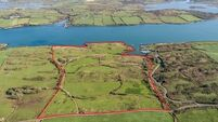 Farm on edge of west Cork's Roaringwater Bay for €600,000