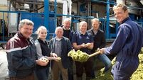 Environmental sustainability is new focus of Shinagh Farm