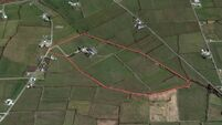 Kerry farm with quality grassland to attract plenty of attention