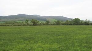 Local interest to test value of 61-acre farm in south Tipperary