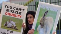 National coursing meeting draws protest