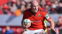 O'Connell on target for Quins clash