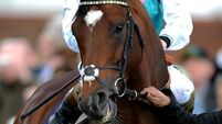 Frankel crowned master of the turf