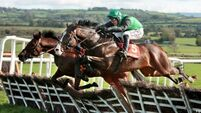 JESSICA HARRINGTON: It's Cheltenham here we come as trio get the all clear