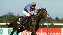 Baffled by Battle's place in pecking order for Epsom