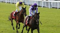 Workmanlike Camelot back in business
