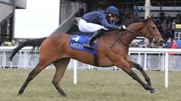 O'Brien hoping exciting Moth can take flight in 1000 Guineas