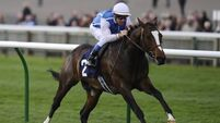 Gold-en boy Anodin in Classic hunt at Longchamp