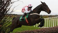 Gold Cup dream still very much alive for Flemenstar