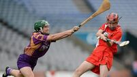 Cork and Wexford share 12 All Stars