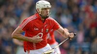 Rebels' wait for silverware too long, admits Cronin