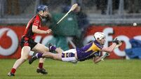 Determined Oulart revel in rain