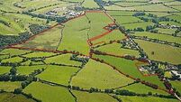 Prime site to fetch €12,000 an acre
