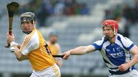 Late point surge lifts  Laois