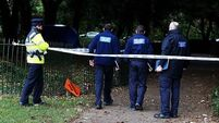 Man faces murder charge after burnt remains found in Phoenix Park